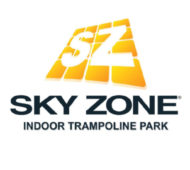 logo-skyzone